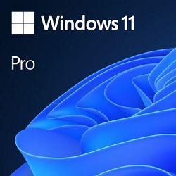 DSP Windows 11 Pro Cro 64-bit, FQC-10524