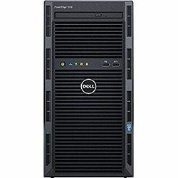 SRV DELL T30, E-1225 3.3 Gz, 2x1TB, 1x8GB MEM