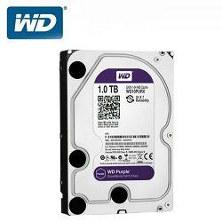 Tvrdi disk HDD WD Purple (3.5 Surveillance Hard Drive, 1TB, 64MB, RPM IntelliPower, SATA 6 Gb/s)