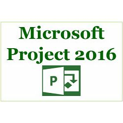 Project Pro 2016 Eng Medialess