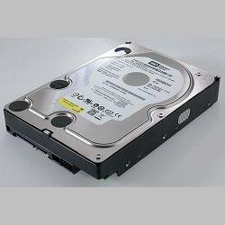 Tvrdi disk Western Digital 250GB S-ATAII, 7200rpm, 8MB cache (WD2500AVJS)