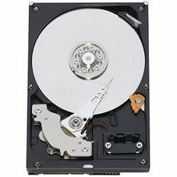 Tvrdi disk HDD WD WD20PURX Caviar Purple AV 2TB 64MB IntelliPower