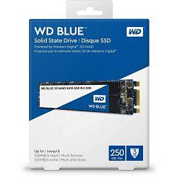 SSD WD Blue 3D NAND 250GB, M.2 2280, R550/W525