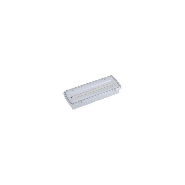 LED panik svjetiljka 3 h, 4.4W,4000K,400lm,IP65 s naljepnicom  EME-507L50