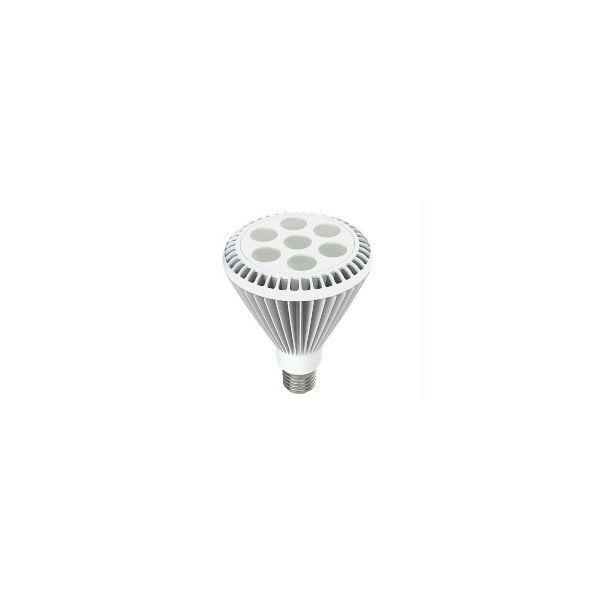EcoVision LED žarulja PAR30HP  E27, 9W, 4000-4500K - neutralna bijela, bijela